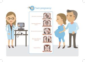 Cómo Se Realiza El Diagnóstico Del Embarazo Gemelar