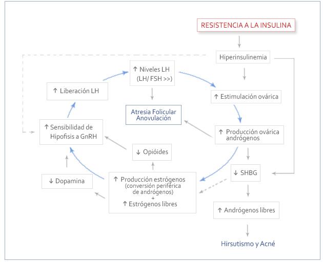 Dieta para sindrome de ovario poliquistico pdf